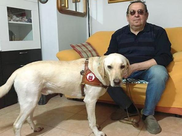 Torino Caccia Via Dallasl Il Cieco Con Il Cane La Bestia Qui No